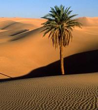 Agadir, il granaio fortificato del Marocco