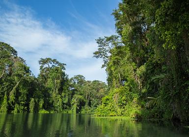Costa Rica: Tortuguero, Arenal e Manuel Antonio