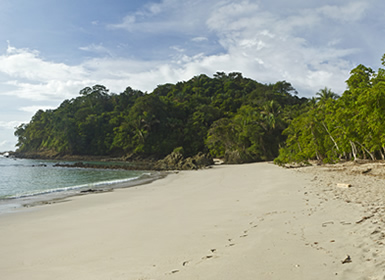Costa Rica: Tortuguero, Arenal, Monteverde e Manuel Antonio