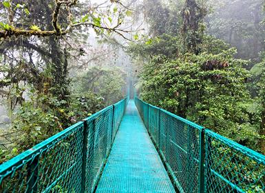 Costa Rica: Tortuguero, Caribe, Arenal, Monteverde e Manuel Antonio