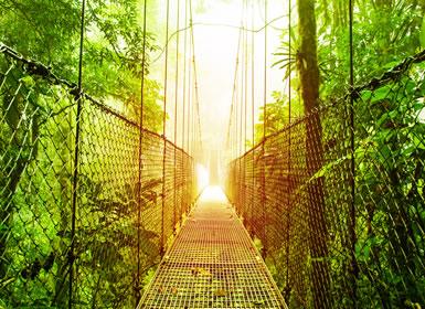 Costa Rica: Tortuguero, Caribe, Arenal, Monteverde, e notte a San José