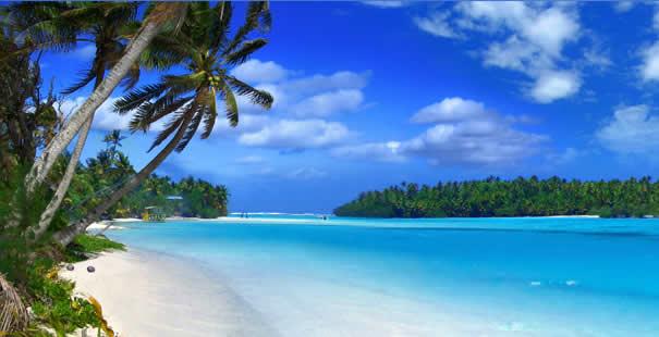Hotel Isola Di Hawaii Da 34 Offerte Di Hotel Economici A Isola Di Hawaii Logitravel
