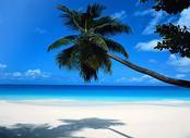 Voli Milano Mahe Island, Seychelles , MIL - SEZ