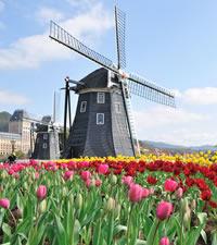 Cosa visitare a amsterdam gli innumerevoli musei i for Weekend a amsterdam offerte