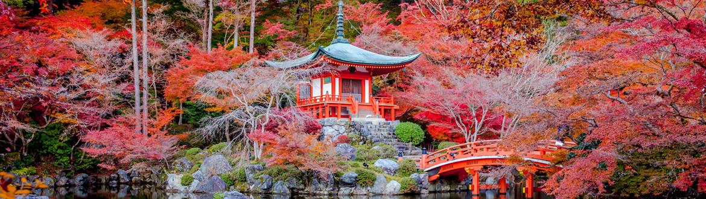 Giappone: Da Tokyo a Kyoto, tour classico