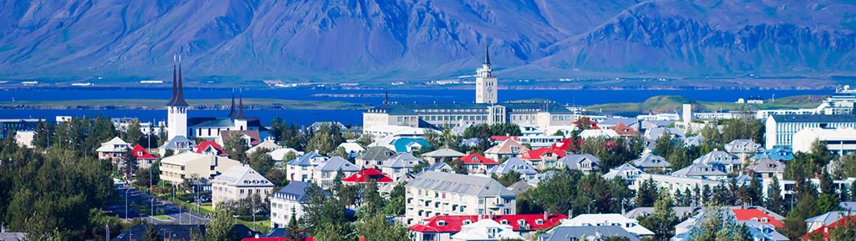 Islanda: Da Reykjavik alla Costa Orientale con avvistamento Balene, tour classico