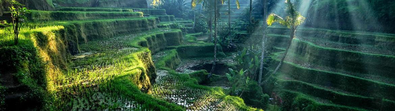 Cina, Indonesia e Singapore: Hong Kong, Ubud con Spiagge del Sud di Bali e Singapore, a modo tuo con soggiorno mare
