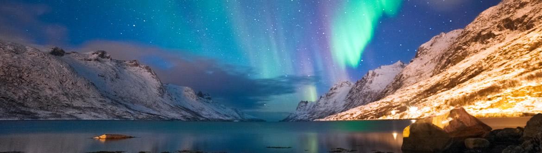 Norvegia: Speciale Oslo, Tromsø, Aurore Boreali e Balene, tour classico