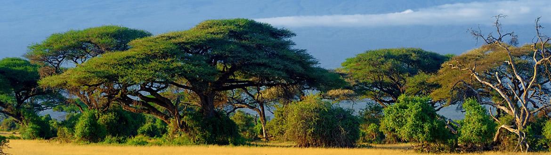 Kenya e Isole dell\'Oceano Indiano, 10 Giorni